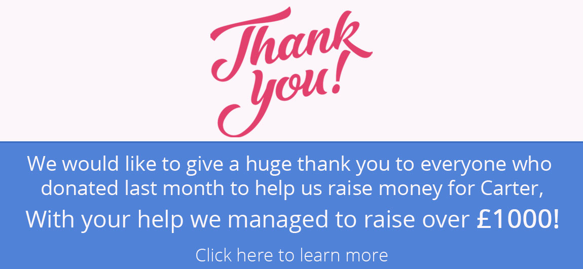 Thank you for helping us raise money for charity banner